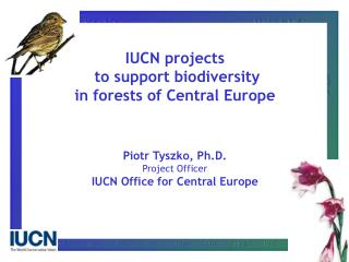 IUCN projects  to support biodiversity in forests of Central Europe Piotr Tyszko, Ph.D.