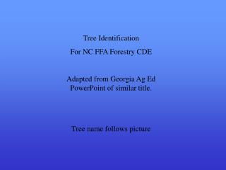 Tree Identification For NC FFA Forestry CDE