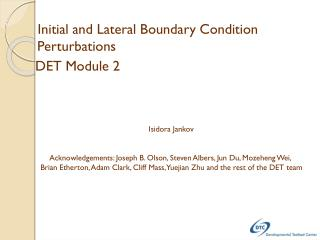 Initial and Lateral Boundary Condition Perturbations   DET Module 2