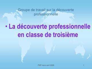Groupe de travail sur la découverte professionnelle