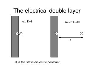The electrical double layer