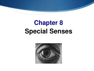 Chapter 8 Special Senses