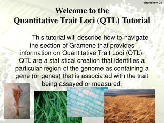 Welcome to the  Quantitative Trait Loci (QTL) Tutorial