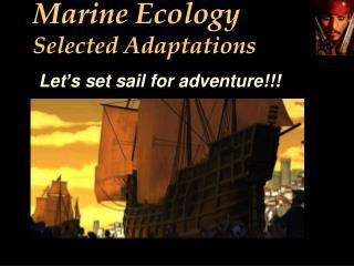 Marine Ecology Selected Adaptations
