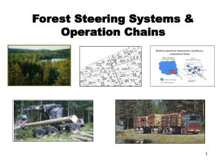 Forest Steering Systems & Operation Chains