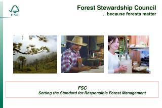 FSC                   Setting the Standard for Responsible Forest Management