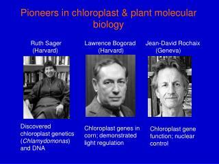 Pioneers in chloroplast & plant molecular biology