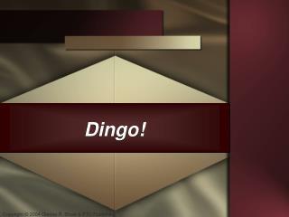 Dingo!