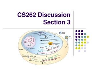 CS262 Discussion Section 3