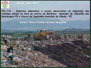 Autora: Elvira Cristina Carneiro Mergulhão