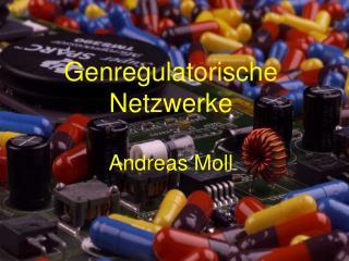 Genregulatorische Netzwerke Andreas Moll