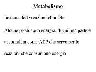 Metabolismo
