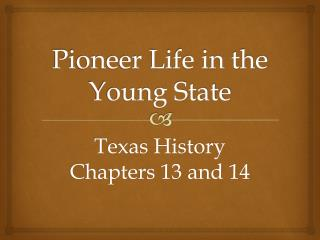 Pioneer Life in the Young State