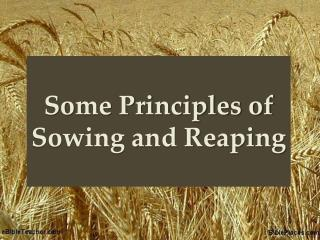 Some Principles of Sowing and Reaping