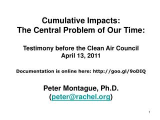 Cumulative Impacts: The Central Problem of Our Time: Testimony before the Clean Air Council