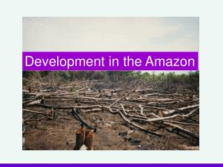 Development in the Amazon