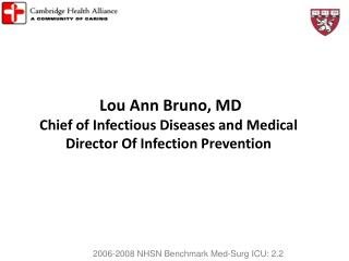 Lou Ann Bruno, MD Chief of Infectious Diseases and Medical Director Of Infection Prevention