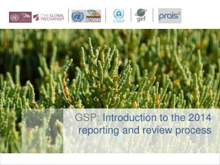 GSP:  Introduction to the 2014 reporting and review  process