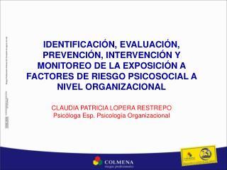 IDENTIFICACI N, EVALUACI N, PREVENCI N, INTERVENCI N Y MONITOREO DE LA EXPOSICI N A FACTORES DE RIESGO PSICOSOCIAL A NIV