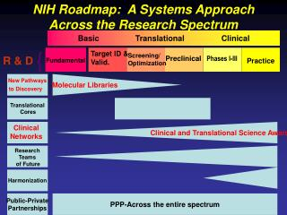 Basic 		Translational 		Clinical