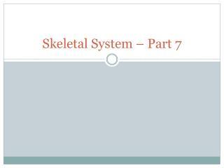 Skeletal System � Part 7