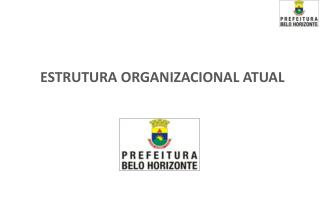 ESTRUTURA ORGANIZACIONAL ATUAL