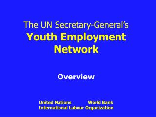 The UN Secretary-General's Youth Employment  Network Overview