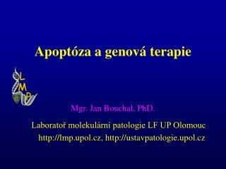 Apoptóza a genová terapie