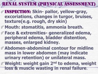 Renal system (physical assessment)