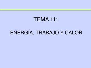 TEMA 11: