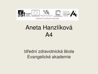 Aneta Hanzlíková A4