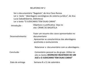RELATORIO Nº 2