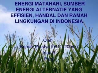 ENERGI MATAHARI, SUMBER ENERGI ALTERNATIF YANG EFFISIEN, HANDAL DAN RAMAH LINGKUNGAN DI INDONESIA