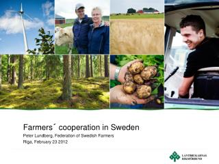 Farmers� cooperation in Sweden