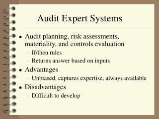 Audit Expert Systems
