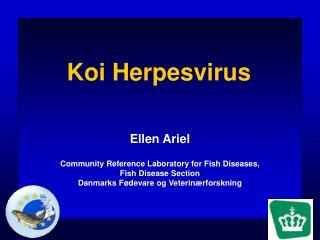 Koi Herpesvirus