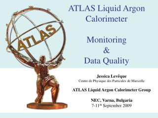 ATLAS Liquid Argon Calorimeter  Monitoring  &  Data Quality