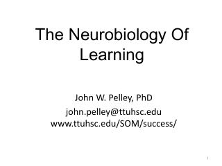 The Neurobiology Of  Learning