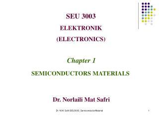 SEU 3003 ELEKTRONIK (ELECTRONICS)