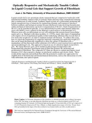 Juan J. De Pablo, University of Wisconsin-Madison, DMR 0520527