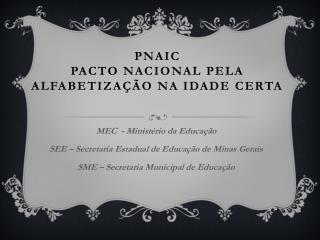 PNAIC  PACTO NACIONAL pela ALFABETIZAÇÃO NA IDADE CERTA