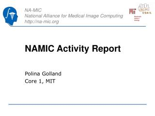 NAMIC Activity Report