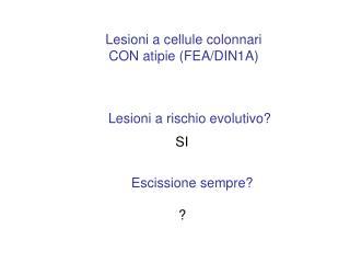 Lesioni a cellule colonnari CON atipie FEA