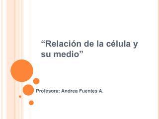 """""""Relación de la célula y su medio"""""""