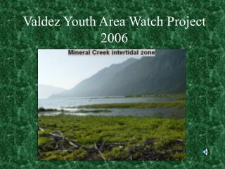 Valdez Youth Area Watch Project 2006
