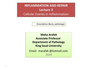 Dr.  Maha Arafah