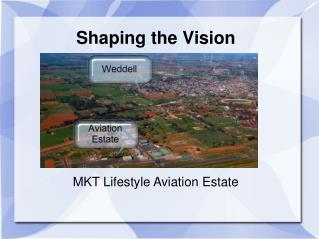 Shaping the Vision