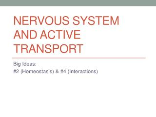 Nervous System and Active Transport