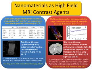 Nanomaterials  as High Field MRI Contrast Agents