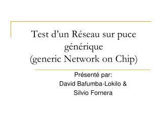 Test d'un Réseau sur puce  générique (generic Network on Chip)